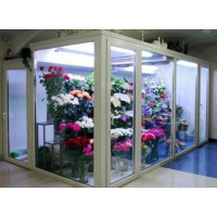 Почему традиционные холодильные системы не подходят для хранения цветов?